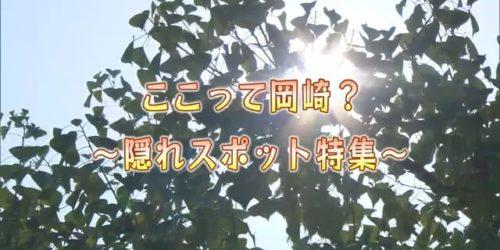 市役所発→情報特急4月特集(3)ここって岡崎?~隠れスポット特集~