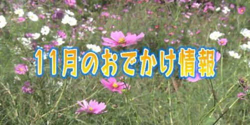 市役所発→情報特急10月特集(3)11月お出かけ情報