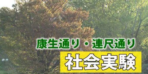 市役所発→情報特急11月特集(2)康生通・連尺通社会実験