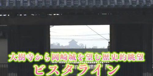 市役所発→情報特急2月特集(1)大樹寺から岡崎城を望む歴史的眺望 ビスタライン